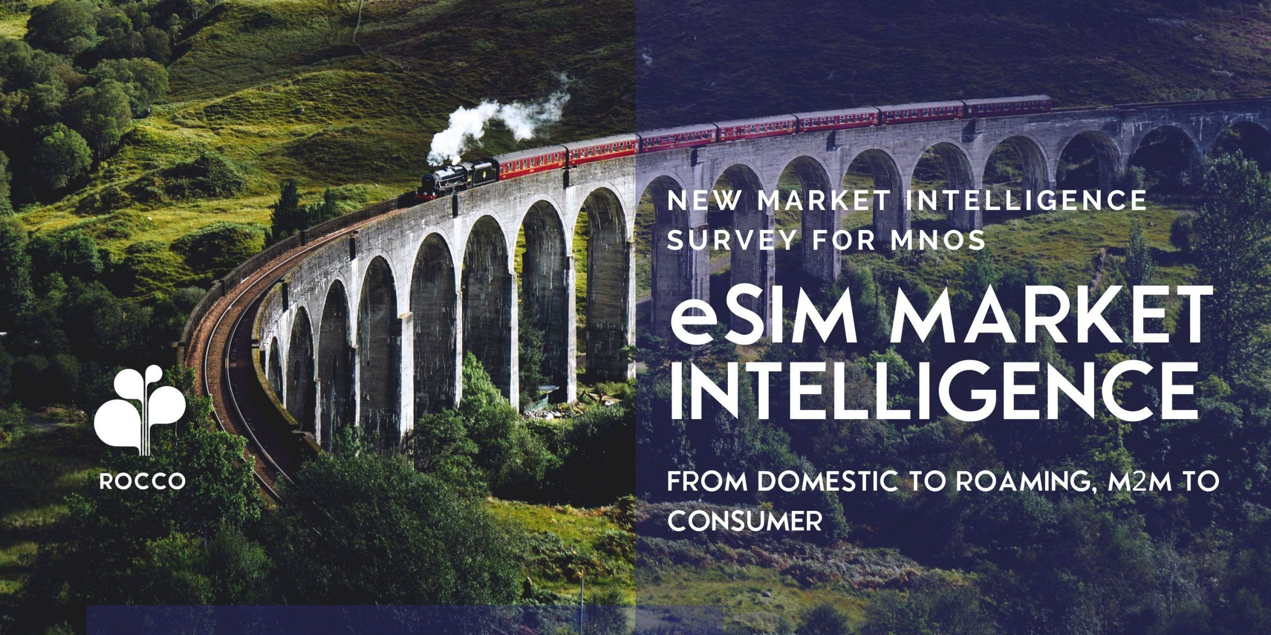 LAUNCH: eSIM Market Intelligence Research with MNO's
